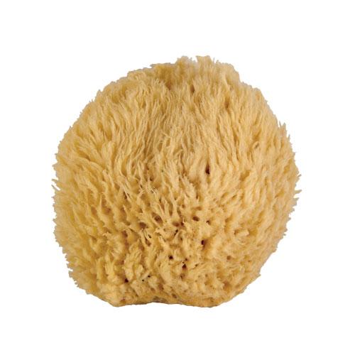 Medium Bath Sponge