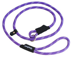 Slip Lead Dog Leash 6 Feet