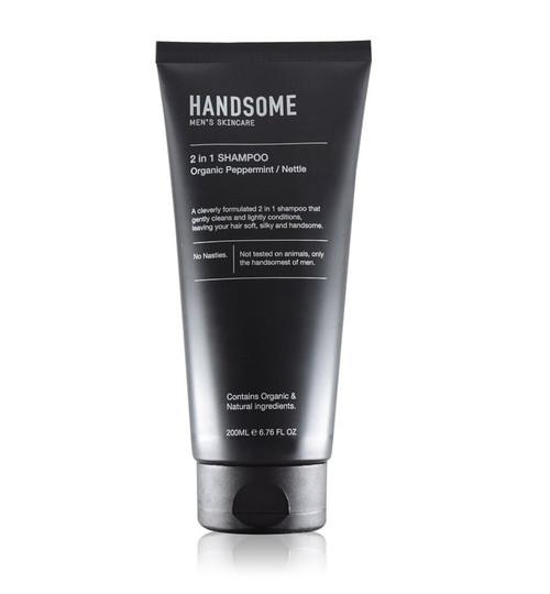 Handsome - Men's 2-in-1 Shampoo