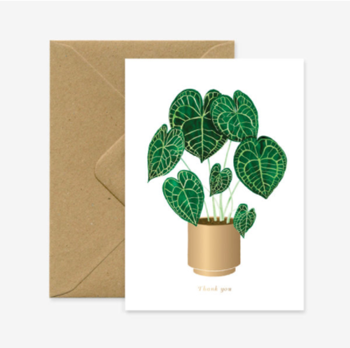 Stylish Thank You Plant. Illustrated by CLAIRE LEINA