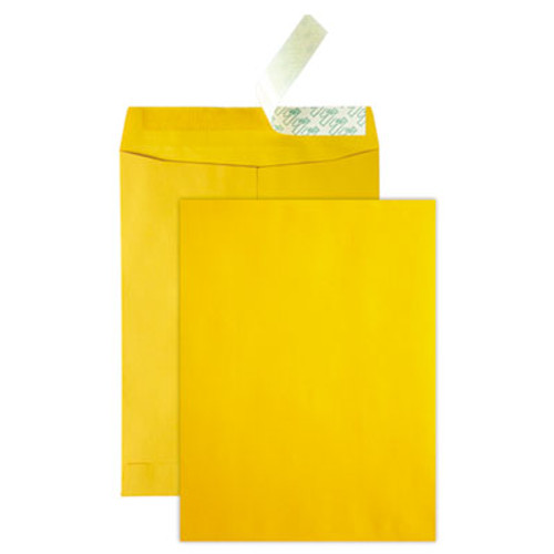 QUA41620 High Bulk Redi Strip Catalog Envelope, 10 x 13, 250/Box