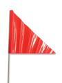 VEHICLE ECONOMY SAFETY FLAG (Gekko)
