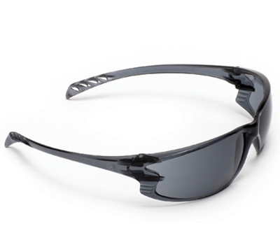 9902 Series -  Smoke Lens GLASSES