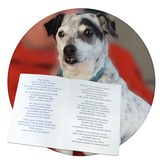Animals with personality short poems and story for people living with dementia