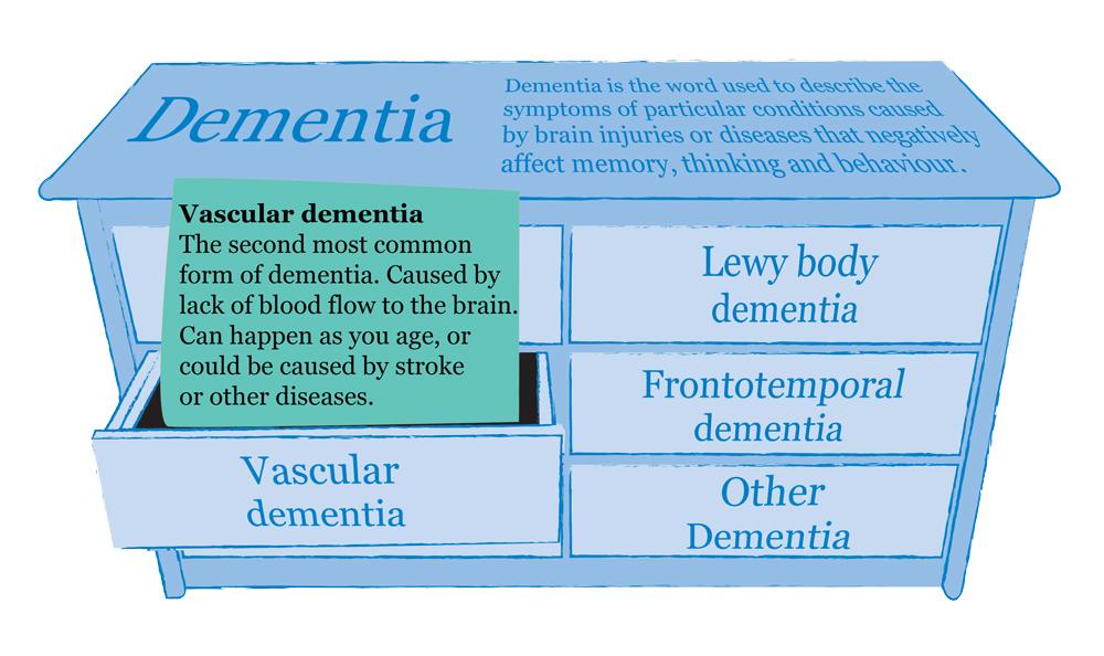 dementia-types-information-vascular-mindjig.jpg