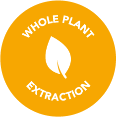Whole Plant Extraction