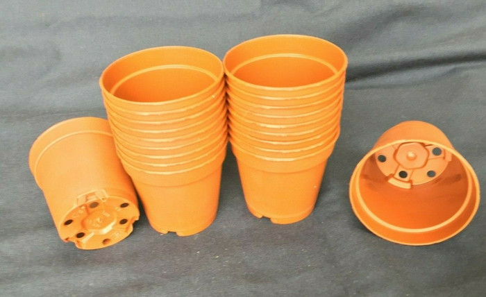 Plastic Pots, MXC5.5 Poppelmann 5.5 cm. Lot of 20 New