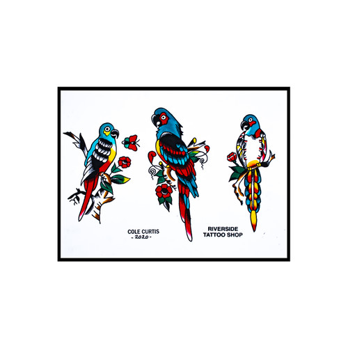Bird of Paradise Flash - Cole Curtis