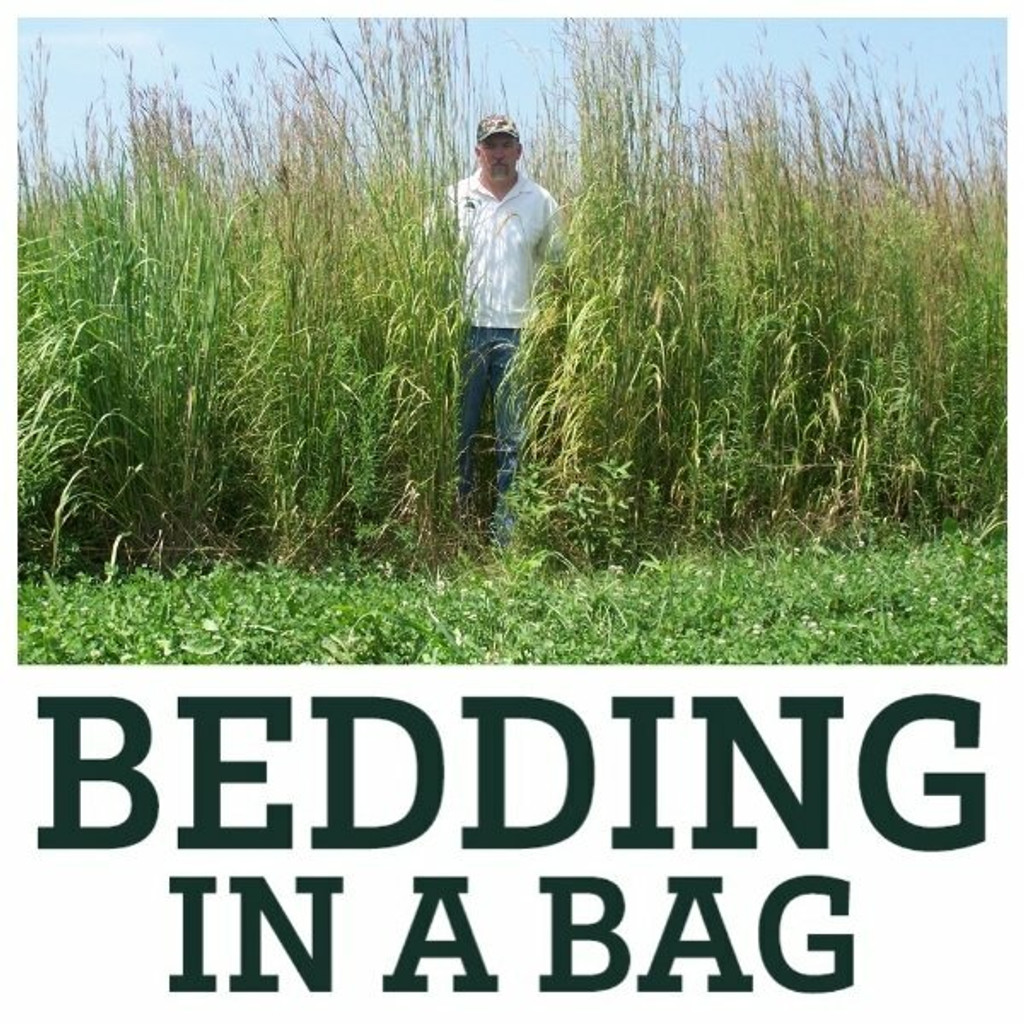 Real World Bedding-In-A-Bag