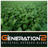 Real World Generation 2 Soybeans - 50 lbs.
