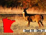 2021 Deer Hunting Opener and Regulations In Minnesota