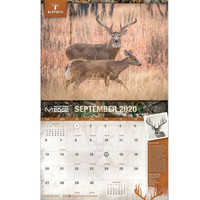 2020 Whitetail Deer Calendar Page