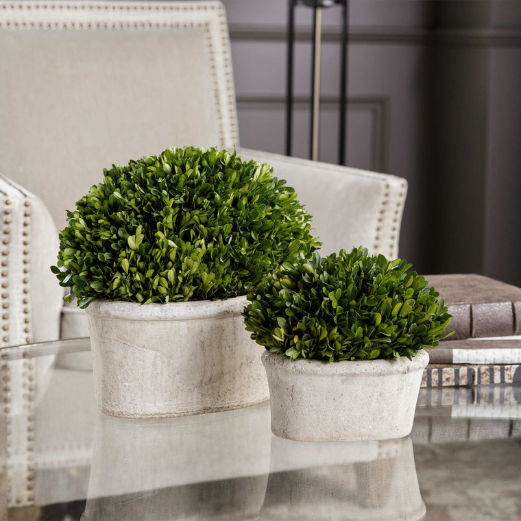 Uttermost Oval Domes Preserved Boxwood Set/2 60107