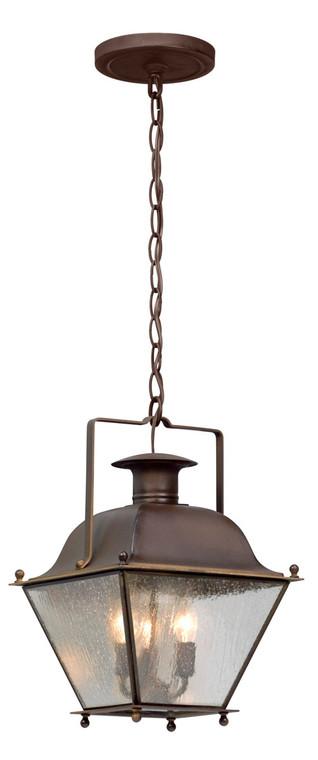 Troy Lighting Wellesley 3 Light Hanger Lantern Small in Natural Rust F5077NR