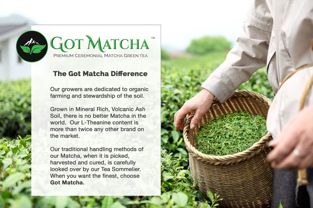 the-got-matcha-difference2a.jpg