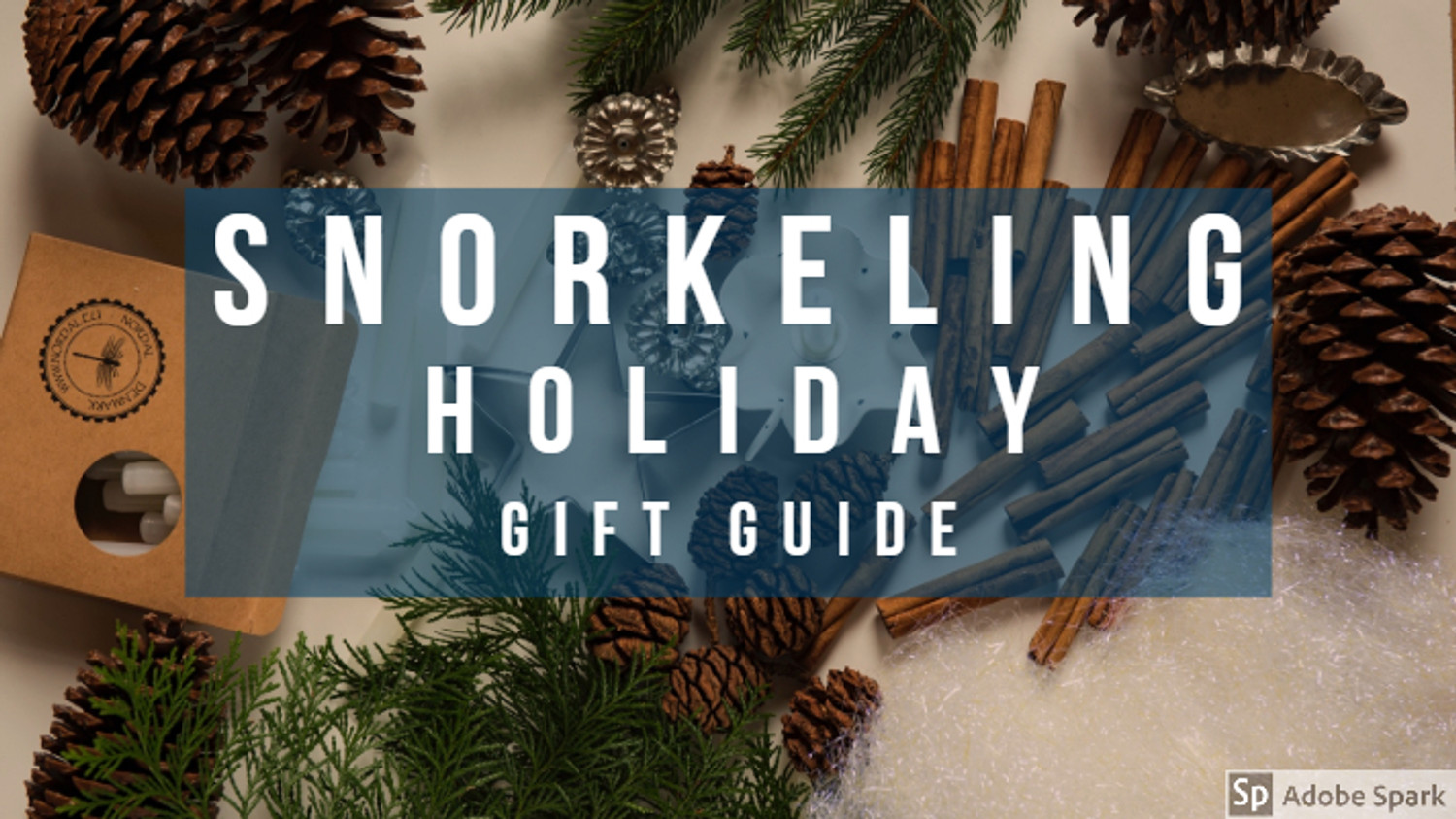 Snorkeling Holiday Gift Guide