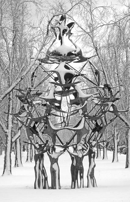 Birds Sculpture- Framed