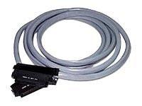 03471 -- C2G - Network cable - RJ-21 (M) to RJ-21 (M) - 5 ft - UTP - gray -- New