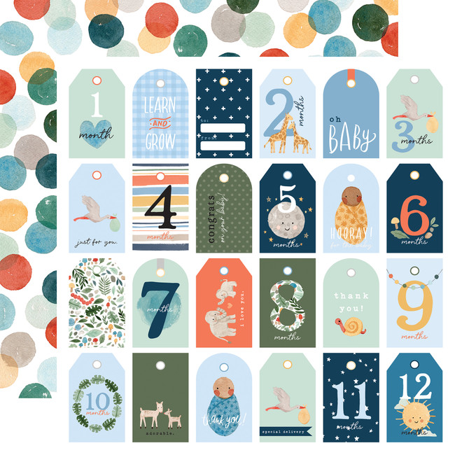 Welcome Baby Boy: Boy Tags