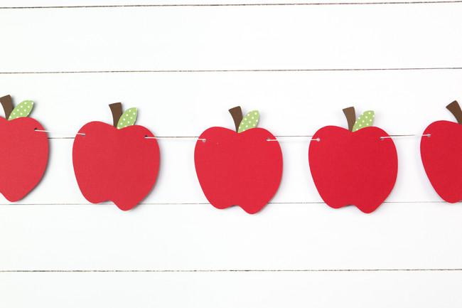 Apple Garland (3 ft)