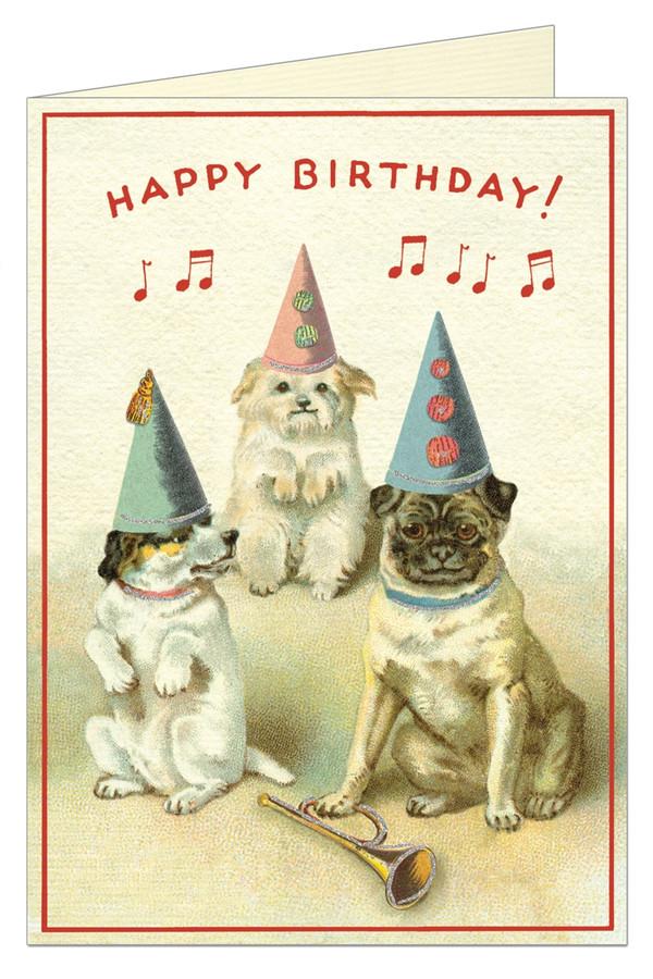 Cavallini & Co: Happy Birthday Dogs