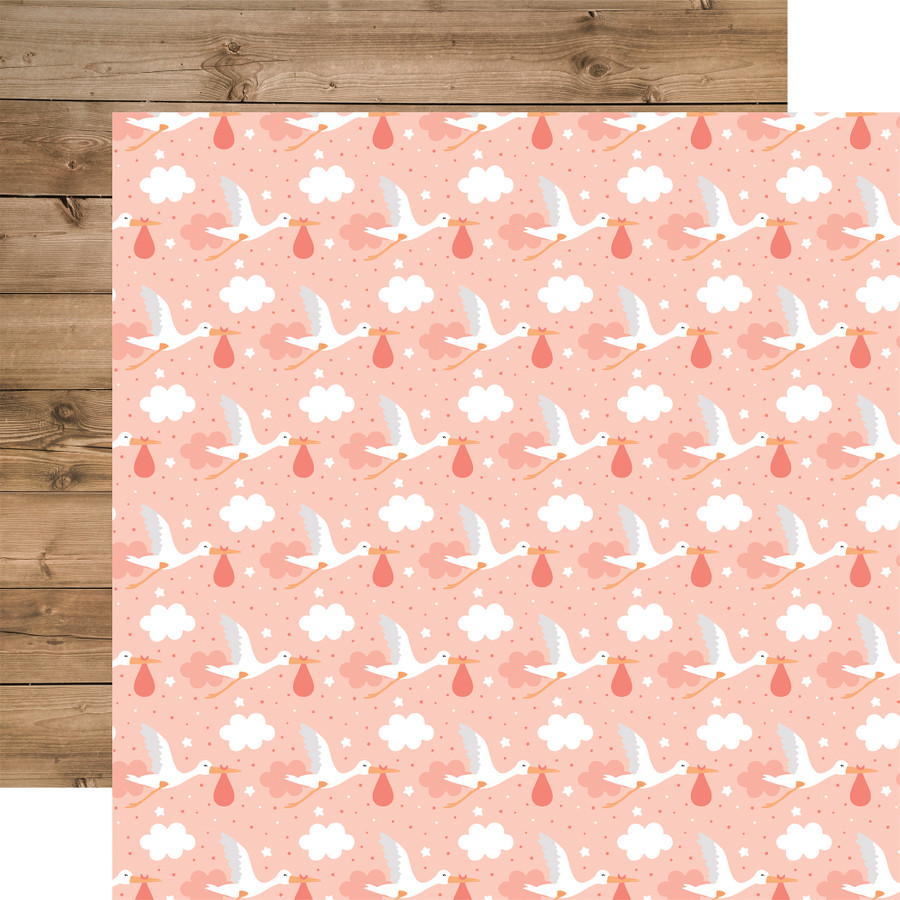 Baby Girl: Little One 12x12 Patterned Paper
