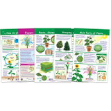 All About Plants Bulletin Board Charts, Set of 5