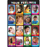 """Smart Poly¬ Chart Emotions Photographs, 13"""" x 19"""""""