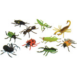"""Insects, 5"""", Set of 10"""