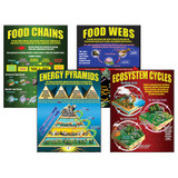 Ecosystems Teaching Posters, Set of 4
