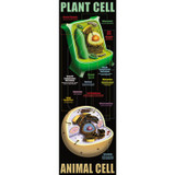 Plant & Animal Cells Colossal Concept Poster