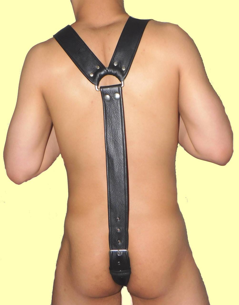 all around harness