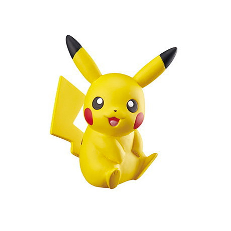 Pokemon Big Eraser