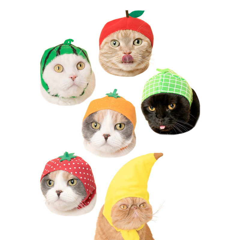 Cat Cap Fruit : Blind Box