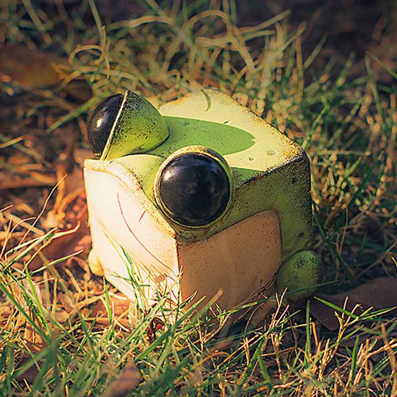 Cube Frog Green by Sank Toys PRE-ORDER SHIPS Q1 2020