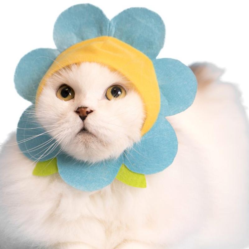 Cat Cap Flower Blind Box