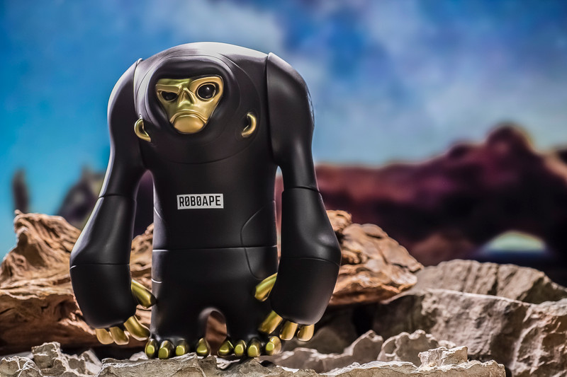 Roboape Skarl & T-Shirt Set by Cz Blank PRE-ORDER SHIPS Q3 2020