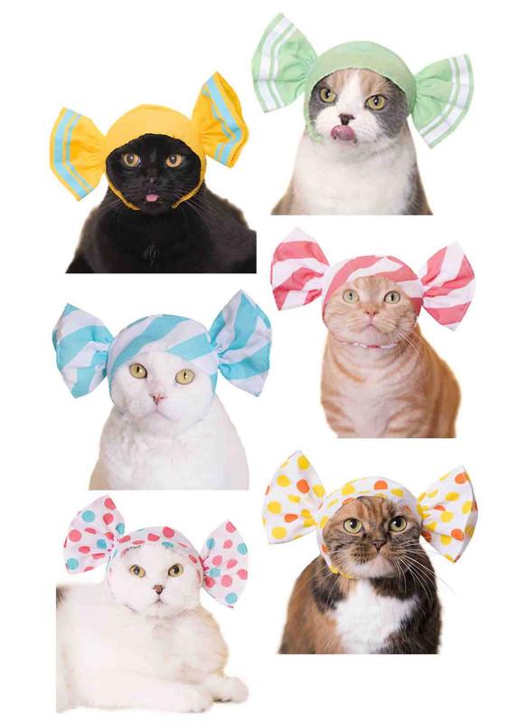 Cat Cap Candy Blind Box