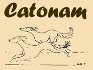 Catoman