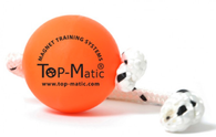 Top Matic Fun Ball Firm