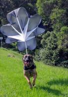 XDOG Parachute