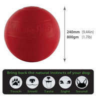 Enduro Ball Large