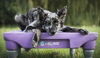 KLIMB Training Platform - PURPLE