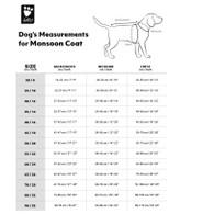 Monsoon Coat by Hurtta