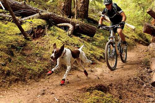 Grip Trex Dog Boots Pairs by Ruffwear