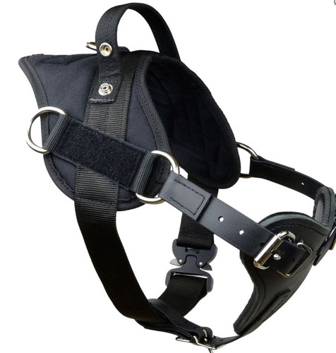 Yurkiw Protection and Tracking Harness with Cobra Buckle