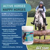 GLC 5500® 2 lb (907 g) Equine Powder