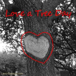 feature-323-lg-love-a-tree-day-heart-shape-tree-limb-cut