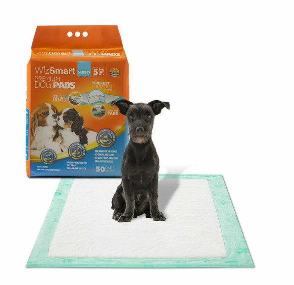 WizSmart Super All Day Dry Premium Dog and Puppy Training Pads, 5 Cup