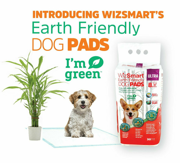 WizSmart Earth Friendly Ultra All Day Dry Premium Dog and Puppy Training Pads, 8 Cup, 30 Count